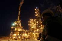 Oil steady as market awaits Algiers meeting- funds cut bullish bets