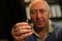 Scientists hope to show humankind originated in Mediterranean