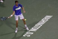 Medvedev sees off twisted ankle, match point to advance in Washington