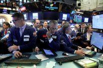 Investors seek gems among unloved small-caps