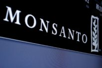Monsanto says Mexico revokes permit to market GMO soy in seven states