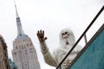 Abominable news: Purported yeti evidence came from bears, dog