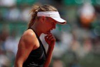 Wozniacki calls for Serena seeding at Wimbledon