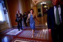 Senator Collins will not back anti-abortion Supreme Court nominee