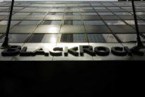 BlackRock replaces Americas corporate governance leader