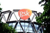 FDA staff raises efficacy doubts on GSK's lung disease treatment