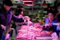 China's pork imports to double in 2019 as swine fever hits local…