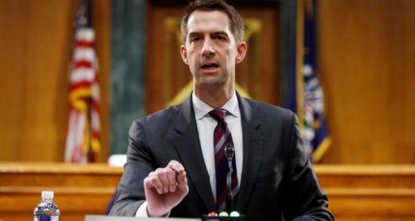 Republican Senator Tom Cotton calls slavery 'necessary evil'