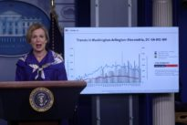 U.S. coronavirus 'extraordinarily widespread,' White House experts say