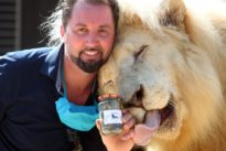 Big cats' droppings help German circus weather coronavirus crisis